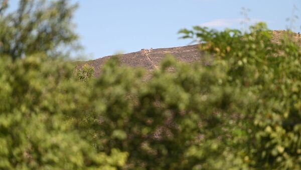 Вид на азербайджанский боевой пост из села Айгепар, Тавуш - Sputnik Արմենիա