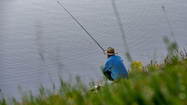 Рыбак у озера - Sputnik Армения