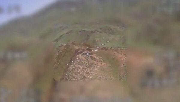 Հայկական արտադրության հարվածային ԱԹՍ-ն գործողության մեջ․ - Sputnik Армения