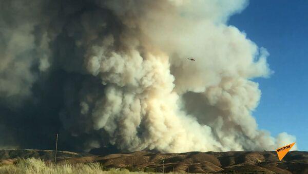 Лесные пожары в Лейк Хьюсе, Калифорния, США - Sputnik Армения