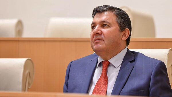 Депутат от правящей партии Грузинская мечта - демократическая Грузия Энзел Мкоян на пленарном заседании парламента Грузии (10 июня 2020). Тбилиси - Sputnik Արմենիա