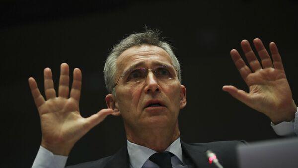 Генеральный секретарь НАТО Йенс Столтенберг обращается к членам комитета по иностранным делам Европейского парламента (21 января 2020). Брюссель - Sputnik Армения