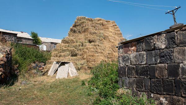 Сено у скотного двора в селе Джрадзор в Ширакской области - Sputnik Армения