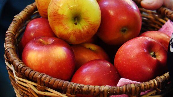 Корзина с яблоками - Sputnik Армения
