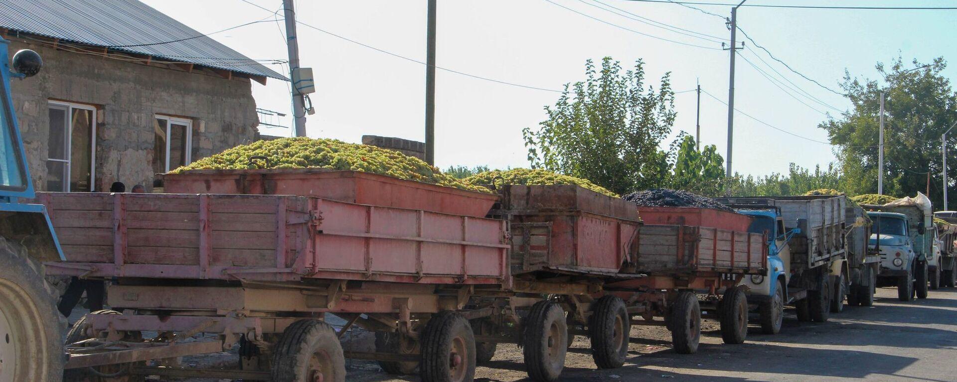 Министр экономики РА Тигран Хачатрян и заместитель министра Арман Ходжоян посетили ряд перерабатывающих предприятий в Араратской области  - Sputnik Արմենիա, 1920, 10.09.2021