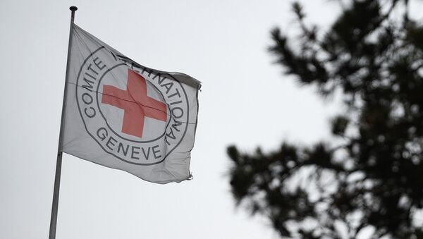 Флаг с эмблемой Международного Комитета Красного Креста - Sputnik Արմենիա