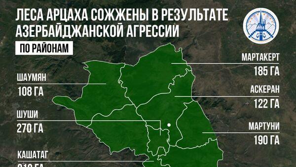 Леса Арцаха сожжены в результате Азербайджанской агрессии - Sputnik Армения