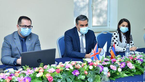 Омбудсмен Армении Арман Татоян принял делегацию во главе с баронессой Кэролайн Кокс (9 ноября 2020). Еревaн - Sputnik Армения