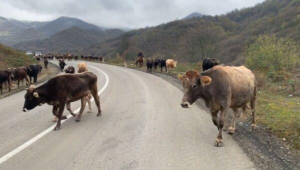 Вслед за миротворцами в Карабах возвращается мирная жизнь - Sputnik Արմենիա