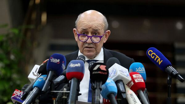 Министр иностранных дел Франции Жан-Ив Ле Дриан во время пресс-конференции с великим имамом египетского Аль-Азхара (8 ноябрь 2020). Каир - Sputnik Армения