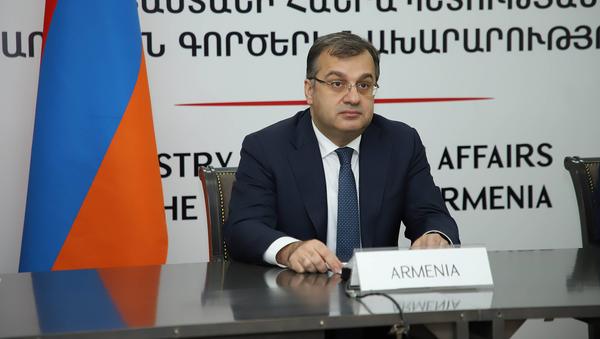 Заместитель министра иностранных дел Армении Артак Апитонян принял участие в 37-м онлайн-заседании министерской конференции Франкофонии (24 ноября 2020). Еревaн - Sputnik Армения