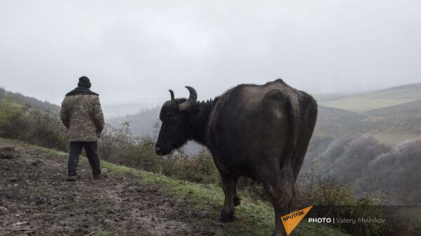 Мужчина на одной из улиц в селе Тагавард Мартунинского района (11 декабря 2020). Карабах - Sputnik Արմենիա