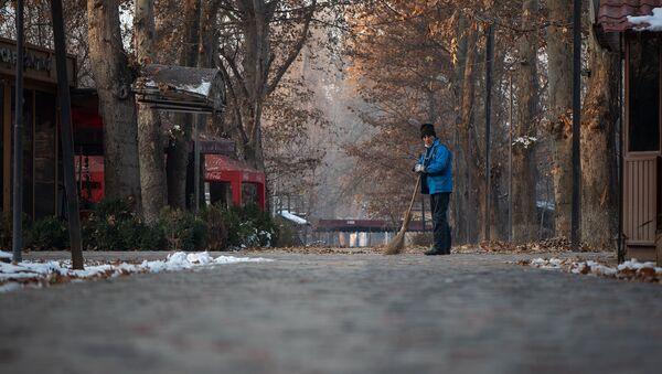Дворник за работой в ереванском парке - Sputnik Արմենիա