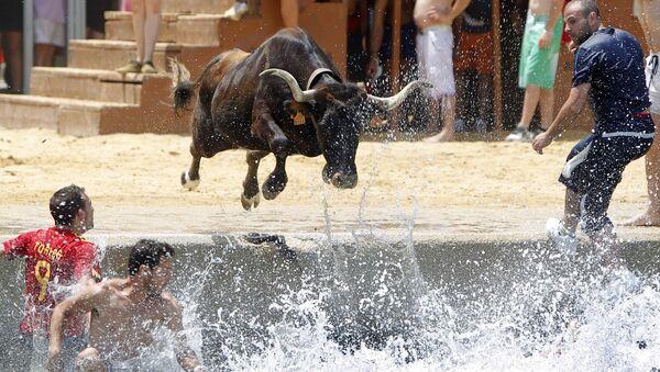 Бык прыгает в море во время испанского фестиваля Bous a la mar - Sputnik Армения