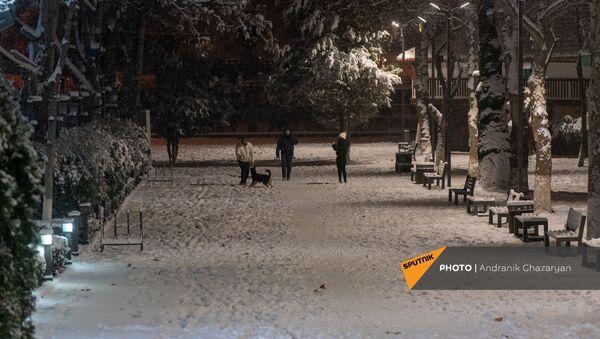 Горожане гуляют в парке в зимний вечер - Sputnik Армения