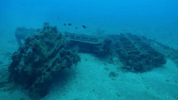 Ученые Севастопольского Государственного Университета обнаружили руины древнеримского порта в акватории сирийского Тартуса - Sputnik Армения