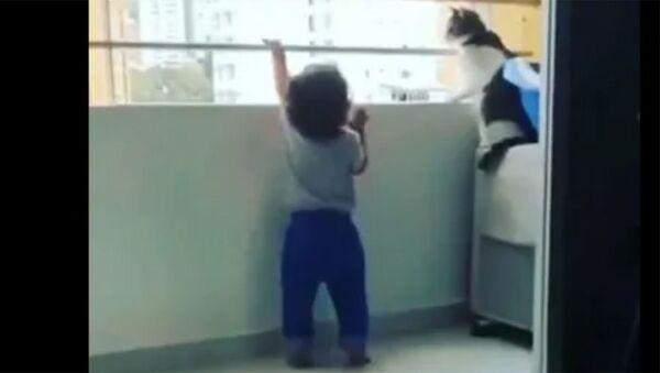 Кошка спасла малыша от падения с балкона - Sputnik Արմենիա