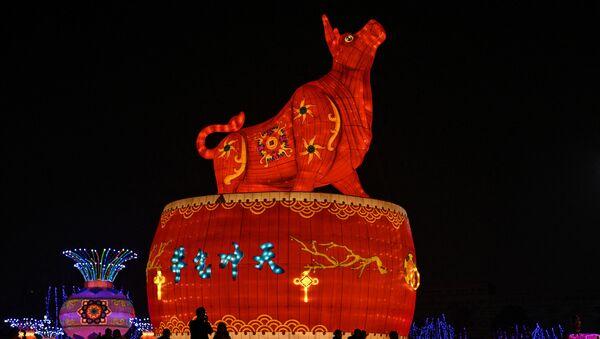 Празднование Нового года в Китае - Sputnik Армения