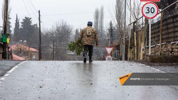 Мужчина с рассадой на отремонтированной дороге в селе Айгепар - Sputnik Армения