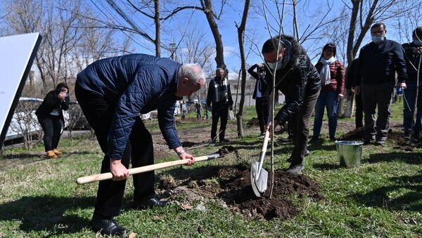 В Парке Победы (Аллея Пограничников) прошла акция Сад памяти (3 апреля 2021). Еревaн - Sputnik Армения