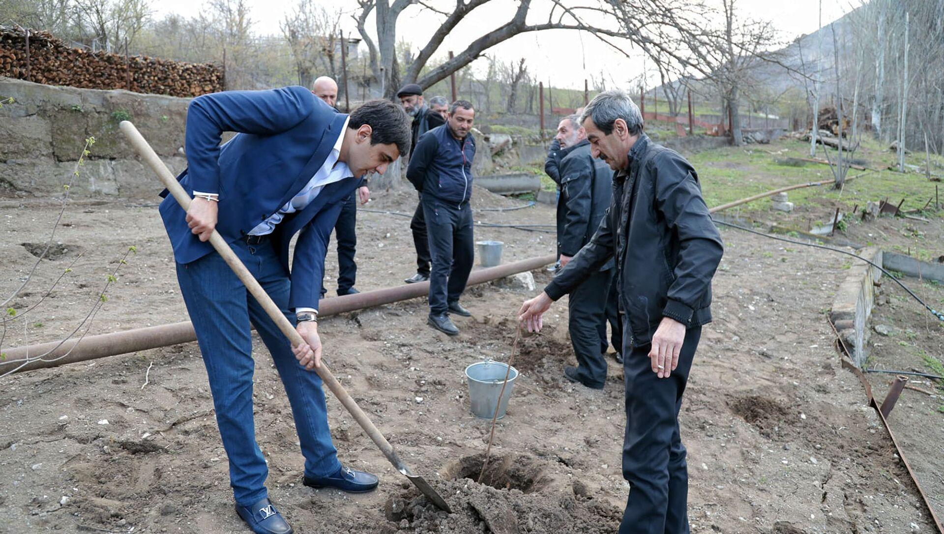 Посадка деревьев в приграничной общине Воротан (3 апреля 2021). Сюник - Sputnik Արմենիա, 1920, 03.04.2021