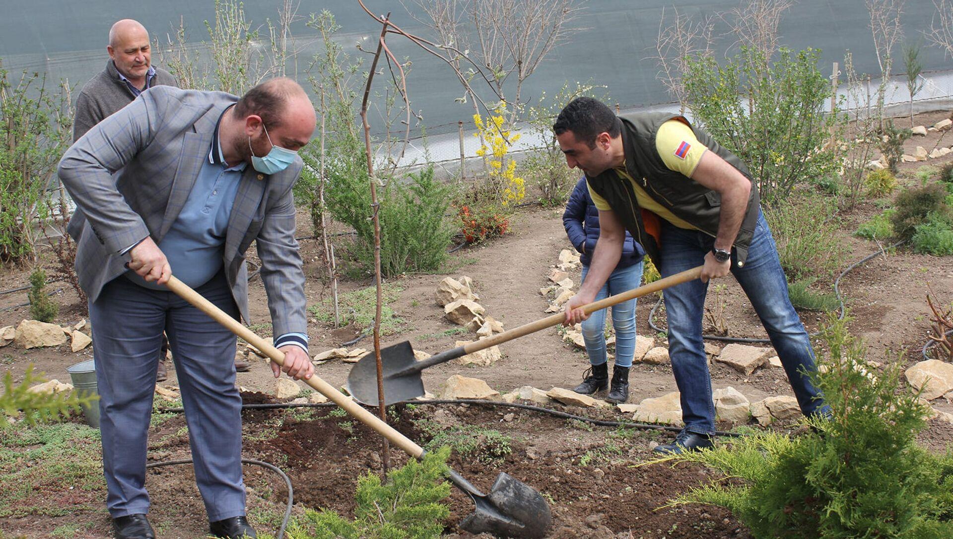 Министр окружающей среды Романос Петросян стартовал инициативу 10 миллионов деревьев (10 апреля 2021). Арагацотн - Sputnik Արմենիա, 1920, 10.04.2021