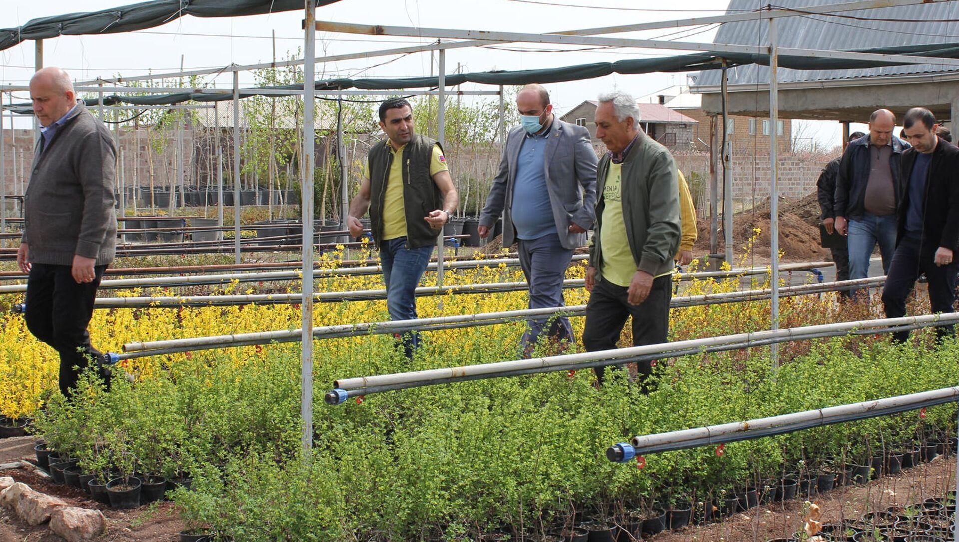 Министр окружающей среды Романос Петросян стартовал инициативу 10 миллионов деревьев (10 апреля 2021). Арагацотн - Sputnik Армения, 1920, 14.04.2021