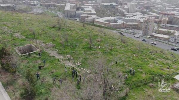 Սարալանջի կանաչապատման երկար սպասված նախագիծը թևակոխում է բուն՝ ծառատունկի փուլ - Sputnik Армения