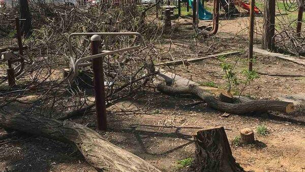 Срубленные деревья по адресу Баграмяна 79а - Sputnik Արմենիա