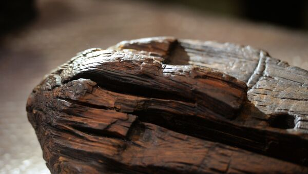 Древнейшая скульптура из дерева, Шигирский идол, пройдет экспертизу - Sputnik Армения