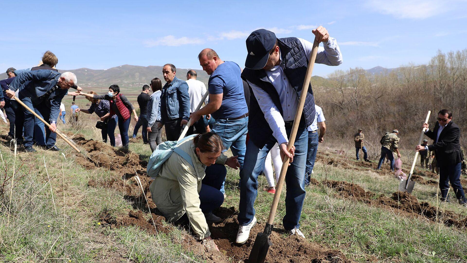 В рамках акции «10 миллионов деревьев» сотрудники Ширакской мэрии посадили деревья на участке Капс Гюмрийского лесничества (25 апреля  2021). Гюмри - Sputnik Արմենիա, 1920, 25.04.2021