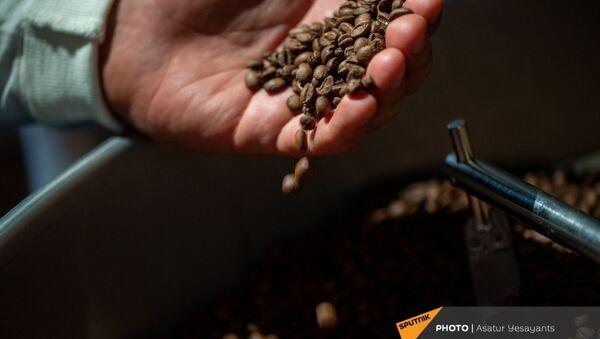 Зерна кофе - Sputnik Արմենիա