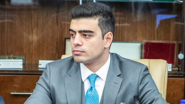 Пресс-секретарь партии Отчизна Сос Акопян - Sputnik Արմենիա