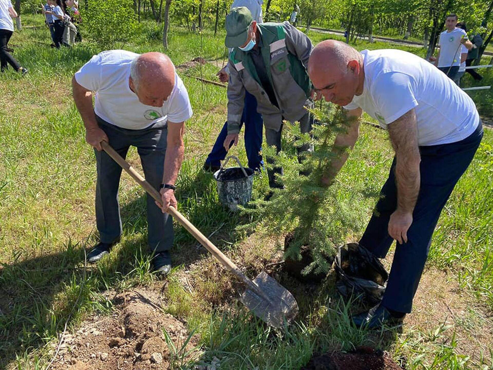 Շնորհակալություն, Երևան. հադրութցիները ծառեր են տնկել Նոր Նորքում - Sputnik Արմենիա, 1920, 03.05.2021