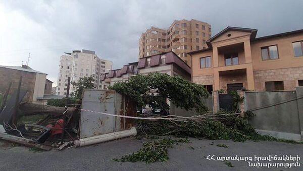 Последствия сильного ветра в Армении - Sputnik Արմենիա