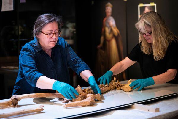 Դանիայի ազգային թանգարանի աշխատակիցները - Sputnik Արմենիա