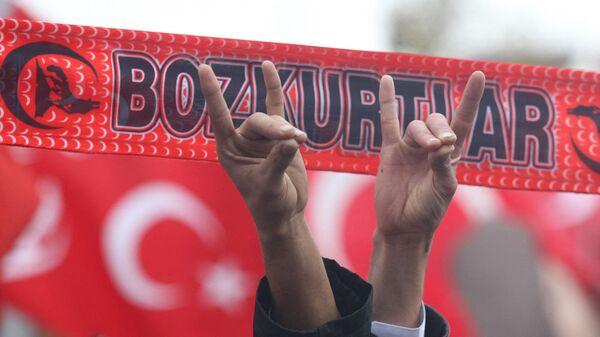 Сторонники Партии националистического движения с жестами ультранационалистической, неофашистской организации партии Серых волков (13 декабря 2009). Анкара - Sputnik Армения