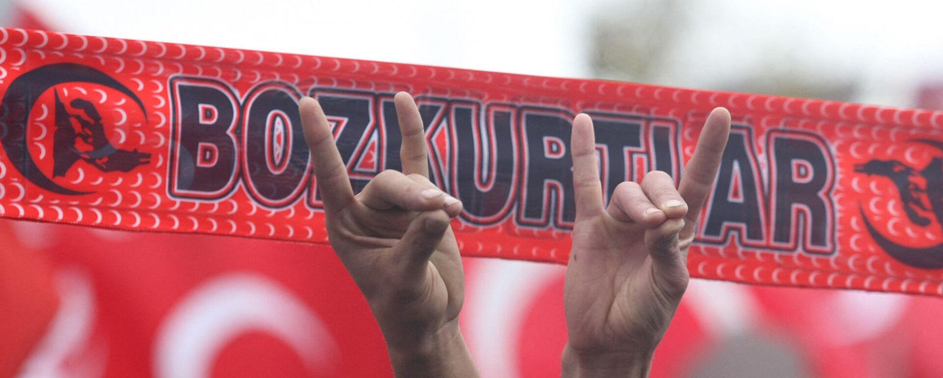 Сторонники Партии националистического движения с жестами ультранационалистической, неофашистской организации партии Серых волков (13 декабря 2009). Анкара - Sputnik Արմենիա, 1920, 21.06.2021