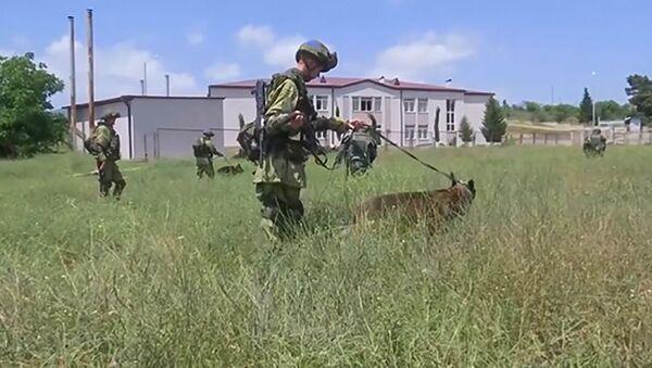Российские саперы  очищают местность от взрывоопасных предметов в населённом пункте Сос - Sputnik Արմենիա