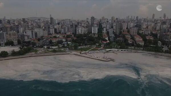 Морская слизь у берегов Стамбула: эко-катастрофа в Мраморном море - Sputnik Армения