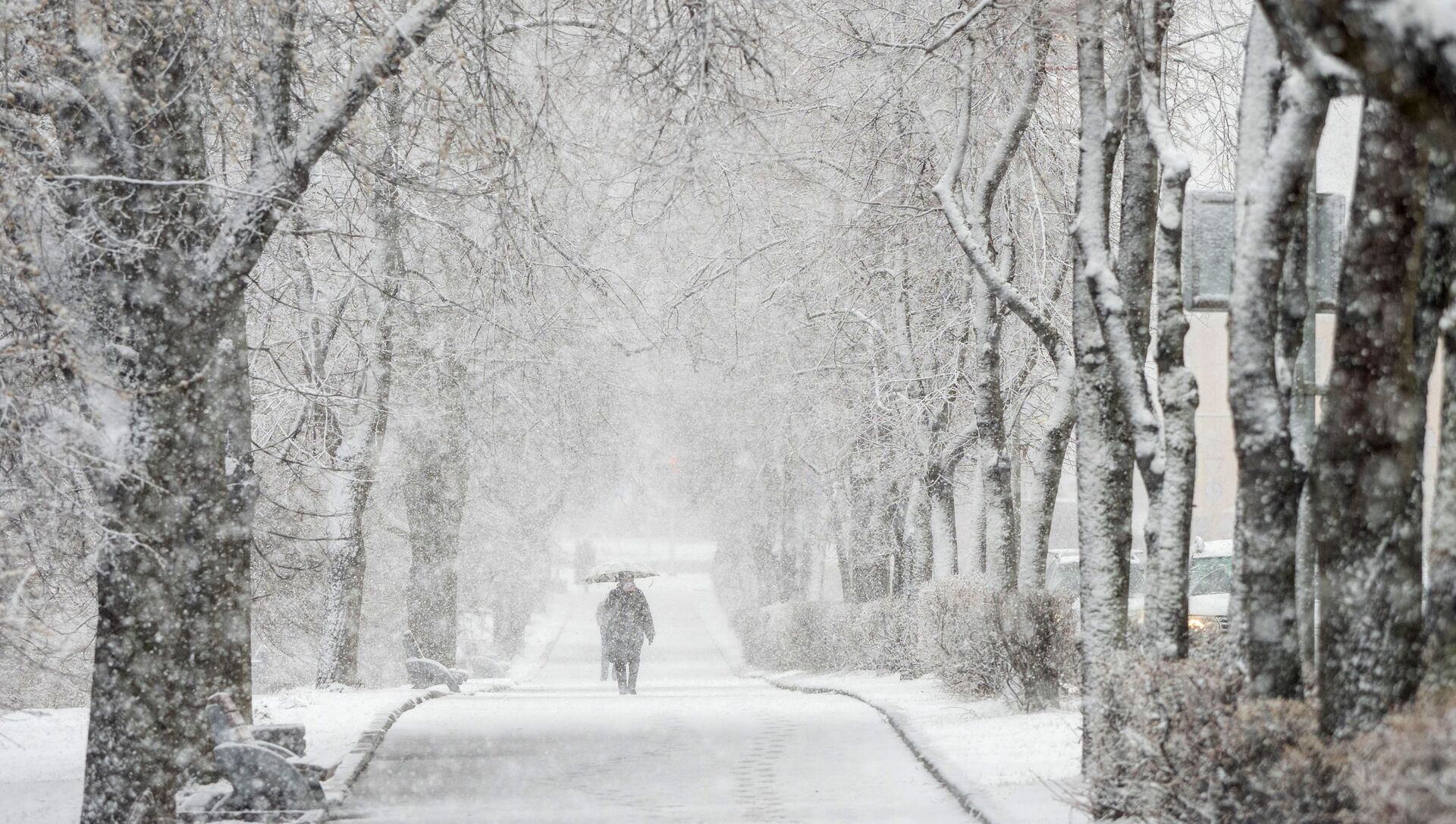 Снегопад в Карелии - Sputnik Армения, 1920, 30.06.2021