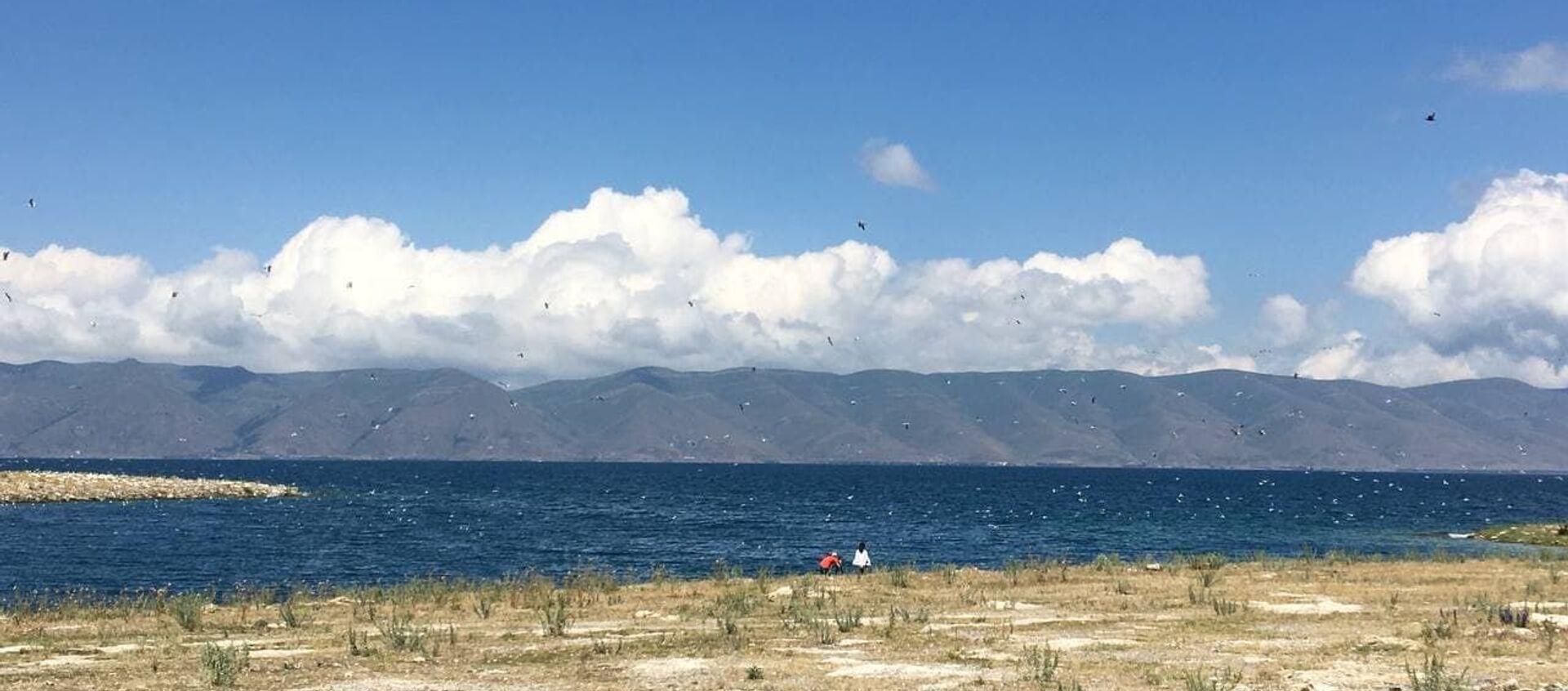 Берег Норашена на озере Севан - Sputnik Արմենիա, 1920, 01.07.2021