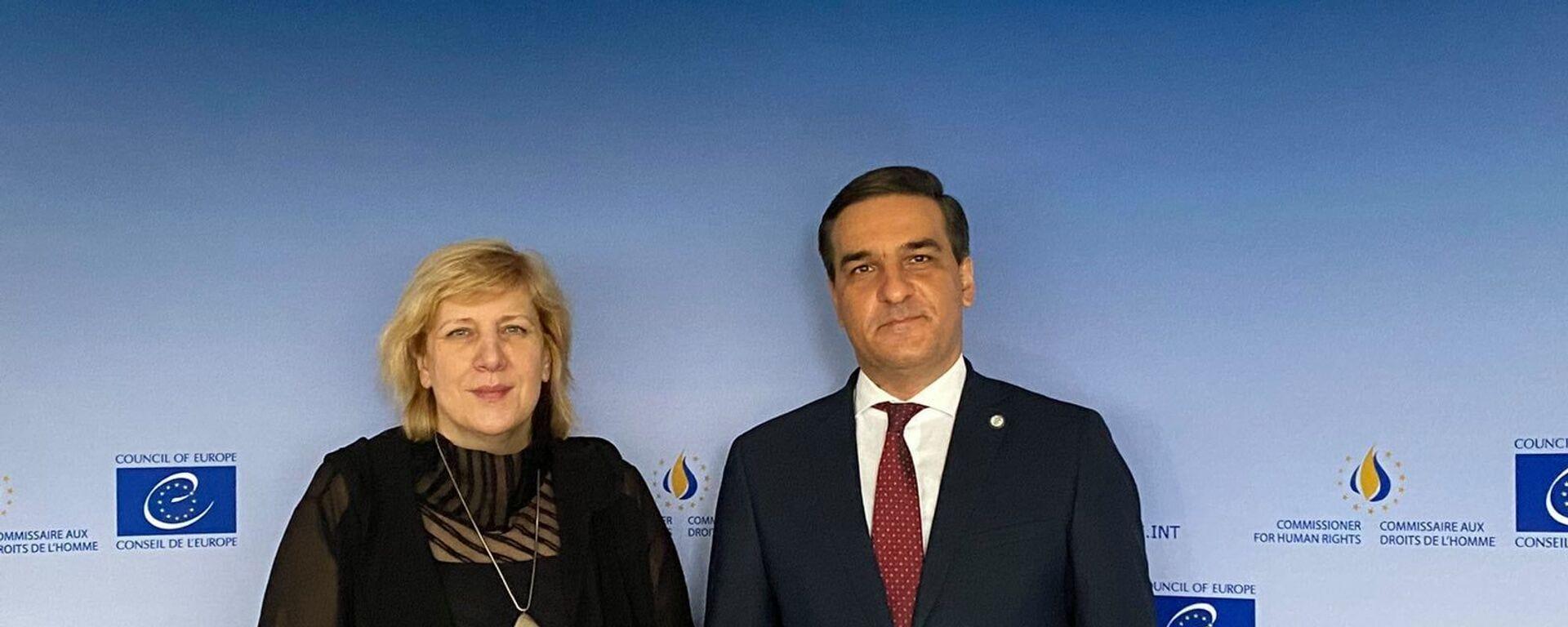 Омбудсмен Арман Татоян на встрече с комиссаром Совета Европы по правам человека Дуней Миятови (2 июля 2021). Страсбург - Sputnik Արմենիա, 1920, 02.07.2021