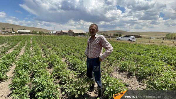 Житель села Бениамин в поле с засохшим урожаем - Sputnik Արմենիա