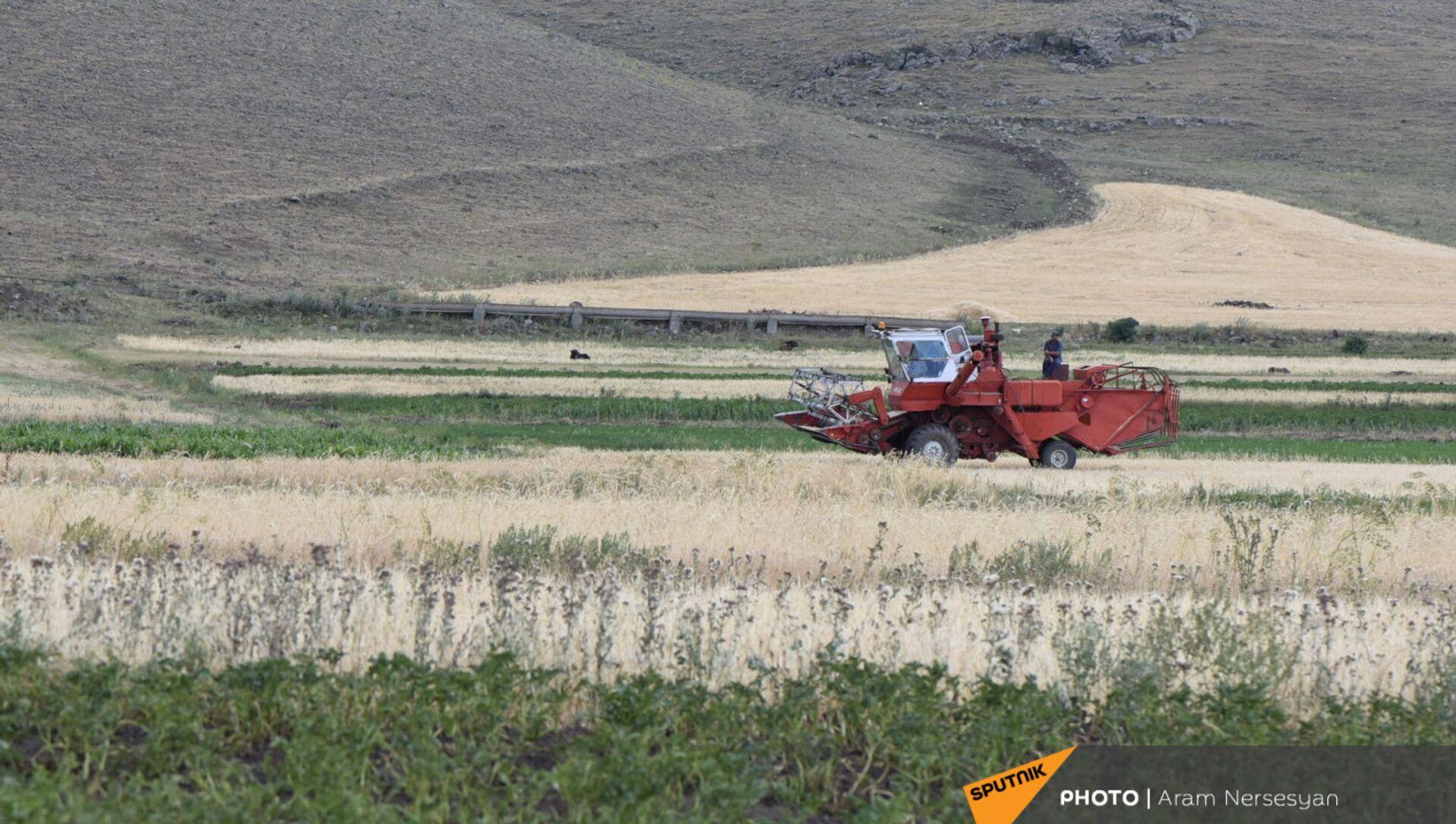 Уборочная техника в поле с засохщим урожаем в селе Бениамин Ширакской области - Sputnik Армения, 1920, 07.07.2021