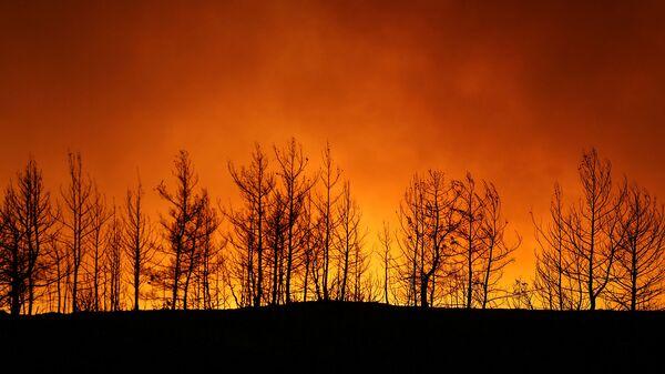Лесной пожар близ города Манавгат, к востоку от курортного города Анталья (29 июля 2021). Турция - Sputnik Армения
