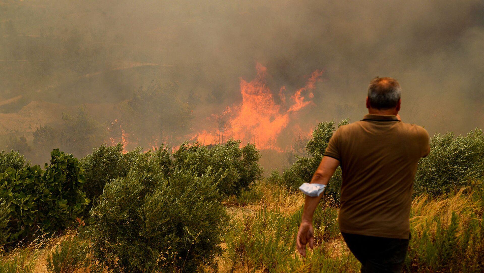 Мкжчина на фоне лесного пожара (29 июля 2021). Турция - Sputnik Արմենիա, 1920, 05.08.2021