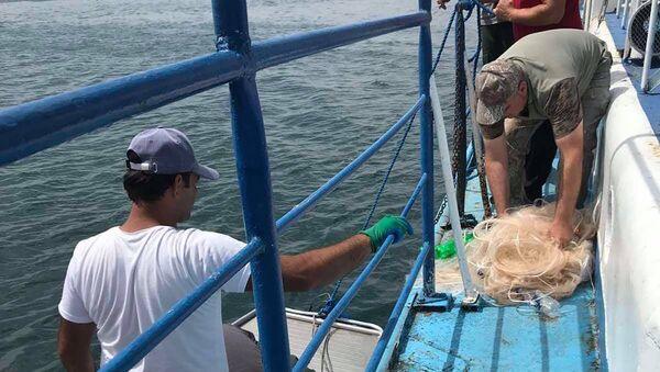 Специальные дежурства против незаконного улова рыбы в национальном парке Севан - Sputnik Արմենիա