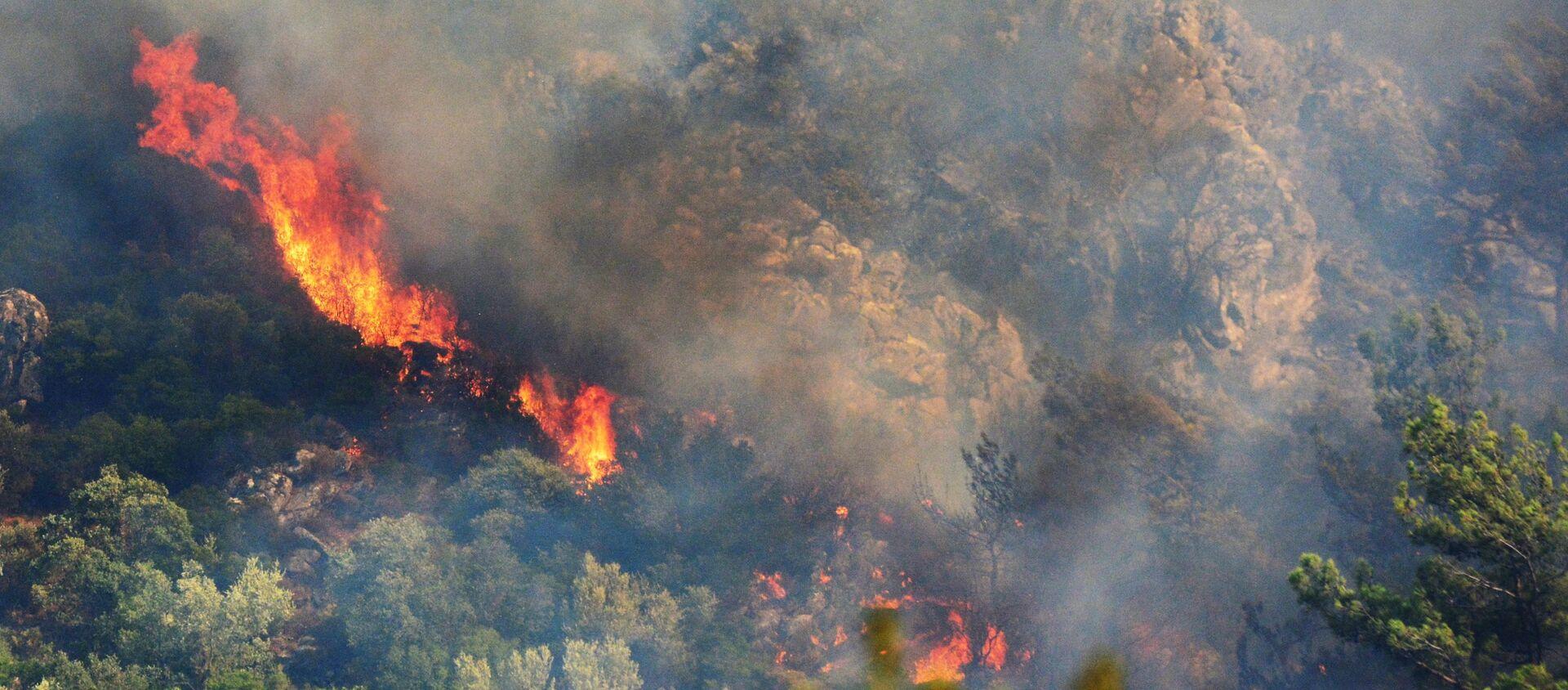 Лесной пожар в окрестностях турецкого города Мармарис - Sputnik Արմենիա, 1920, 14.08.2021