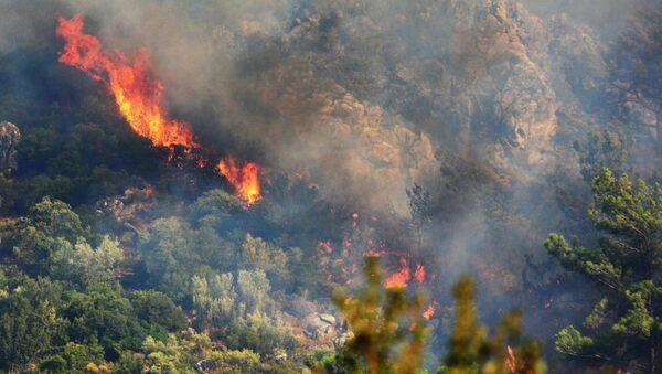 Лесной пожар в окрестностях турецкого города Мармарис - Sputnik Արմենիա